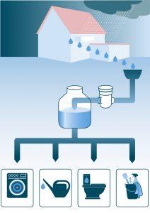 Regenwasser nutzen im Privathaushalt